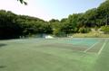東富岡公園(伊勢原市)